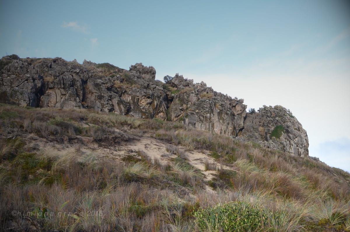 Rekohu-limestone-cliff